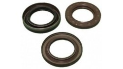 Oil seal crankshaft flywheel side Lombardini