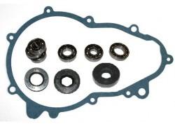 Review set manual transmission JDM