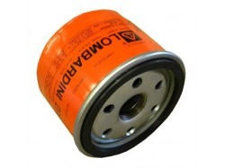 Oil filter Lombardini (original)
