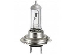 Lamp H4 55W / 12V